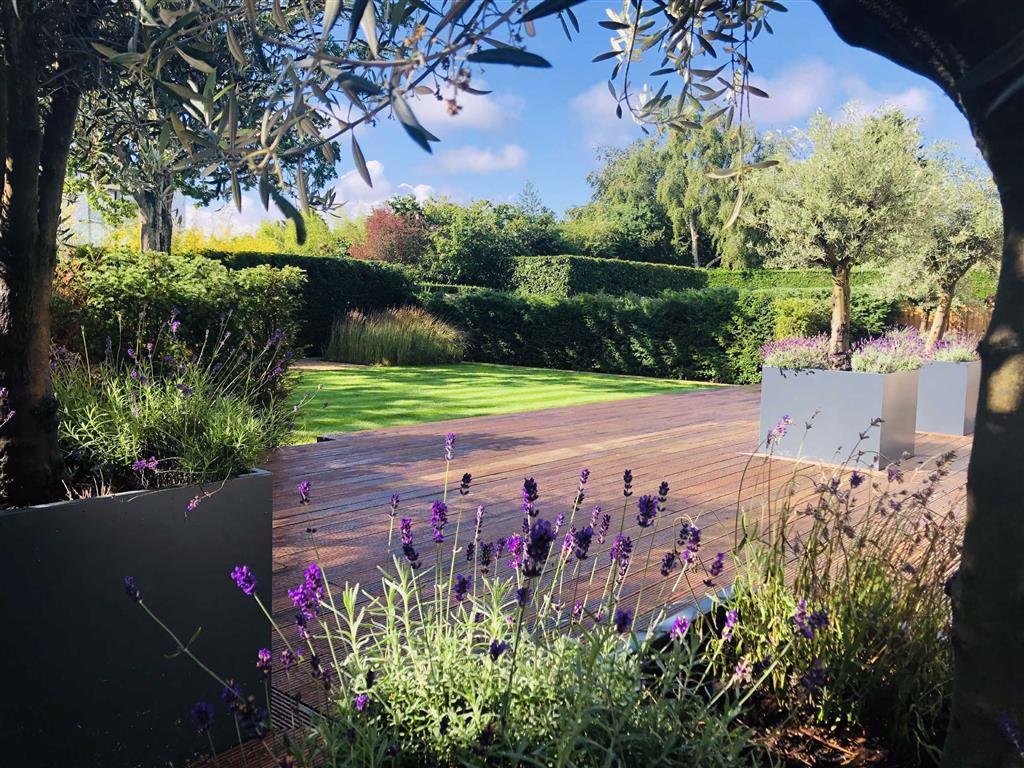 Statons - Rowley Ridge - Garden